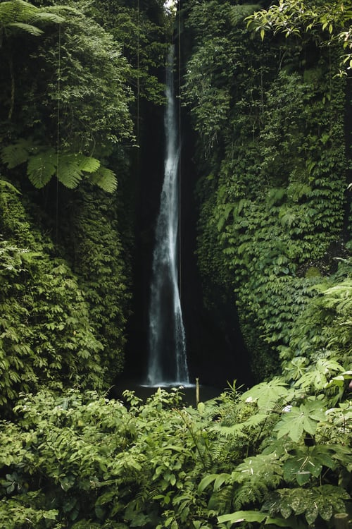 Accessing waterfall is easier when renting scooter in Bali. Photo by Ines Álvarez Fdez on Unsplash