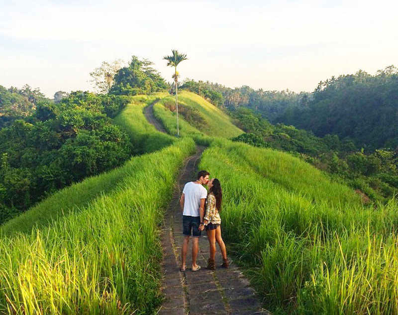 Campuhan Ridge Romantic Activity for Valentine Day in Bali